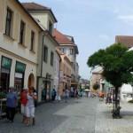 Wizyta w Tynie nad Wełtawą (12)