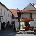 Wizyta w Tynie nad Wełtawą (2)