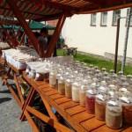 Wizyta w Tynie nad Wełtawą (6)