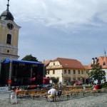 Wizyta w Tynie nad Wełtawą (9)