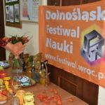 dolnosląski festiwal nauki (11)