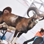 Otwarcie Singletrack Glacensis w Bardzie (142)