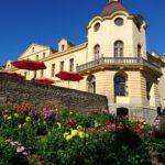 Święto Dalii w Czeskiej Skalicy (4)