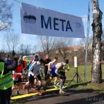 silver run w bardzie (4)