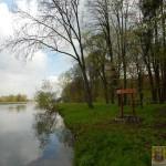 Janowiec_witacz (3)