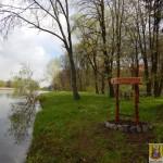 Janowiec_witacz (4)