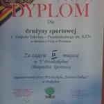 V Przedszkolna Olimpiada Sportowa (7)