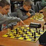 szachy (19)