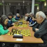 szachy (6)