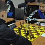szachy (8)