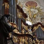lato organowe po raz trzeci w bardzie (3)