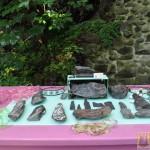 Wystawa skamieniałych Debów Fundacji Serce Barda  (12)