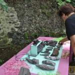 Wystawa skamieniałych Debów Fundacji Serce Barda  (14)