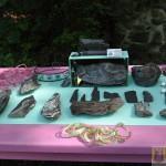 Wystawa skamieniałych Debów Fundacji Serce Barda  (22)