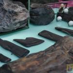 Wystawa skamieniałych Debów Fundacji Serce Barda  (27)