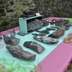 Wystawa skamieniałych Debów Fundacji Serce Barda  (9)