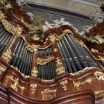 Wratislavia Cantans w Bardzie - Affetti musicali (19)