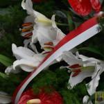 syberia golgota wschodu (30)