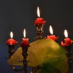 Europejski Dzień Seniora w Bardzie (70)