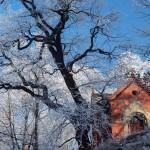Bardo zimowe w obiektywie Anny Piwowarskiej (10)