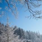 Bardo zimowe w obiektywie Anny Piwowarskiej (2)