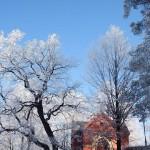 Bardo zimowe w obiektywie Anny Piwowarskiej (21)