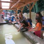 Dzieci z Tynu nad Wełtawą na kolonii w Bardzie (29)