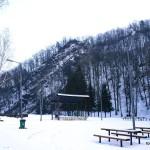 bardo zimowe (5)