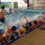 Dolnoślązak umie pływać 2017 (1)
