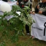 Uroczyste sadzenie dębu Cysters (2)