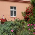 Konkurs Piękny Ogród (28)