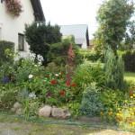 Konkurs Piękny Ogród (29)
