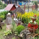 Konkurs Piękny Ogród (31)