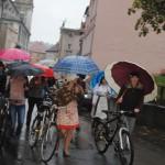 Parada Tweedowa (8)
