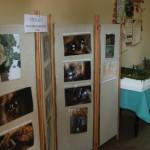 Wizytacja Komisji konkursowej w Janowcu i Brzeźnicy (2)