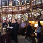 lato organowe 2017 jeden (29)