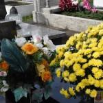 Cmentarz w Bardzie (16)