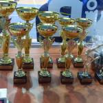 IV Halowy Turniej Piłki Nożnej Opolnica 2018 (9)