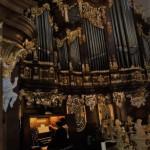 2 koncert lata organowefo (12)